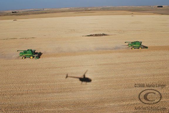 Found Photos: Wheat Harvest | An Eclectic Mind