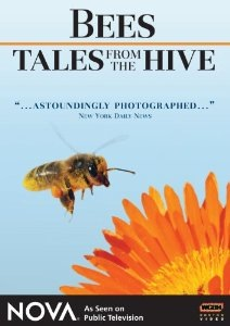 Tales from the Hive
