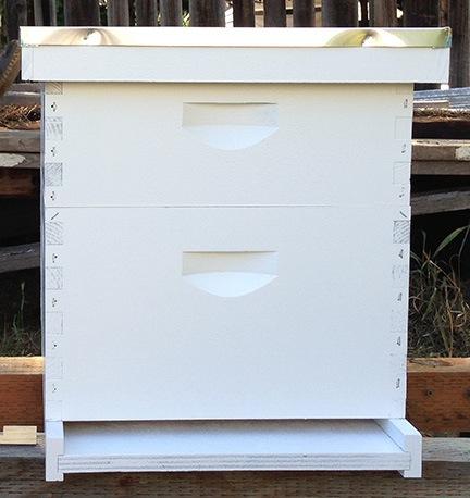 My Hive