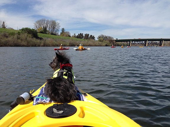 Penny on the Kayak