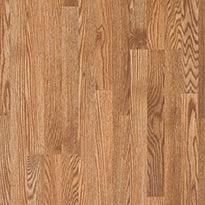 Tidewater Oak