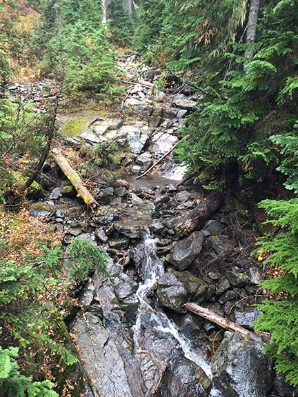 Creek Near Rainy Lake