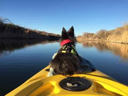 Penny on a Kayak
