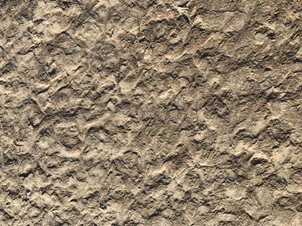 Textured Mud