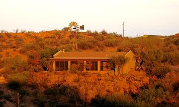 Lichen House