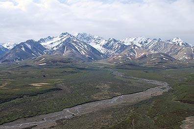 Denali View