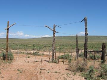 Cowboy Drag Gate