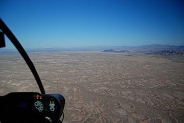 Cactus Plains
