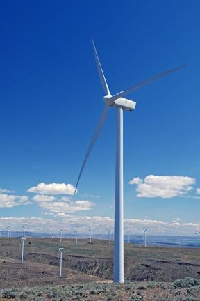 Wild Horse Windmills