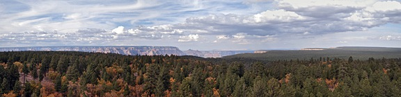 Panorama from Grand View Fire Tower