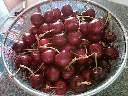Fresh-picked Cherries