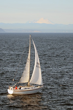 Sailboat on Puget Sound with Mount Baker in Background
