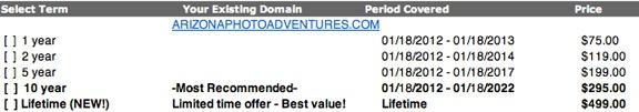Domain Services Scam
