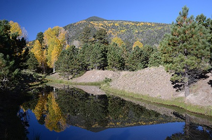 More Aspen Reflections