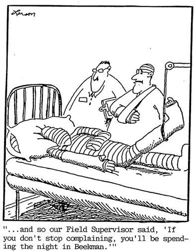 Beekman Cartoon