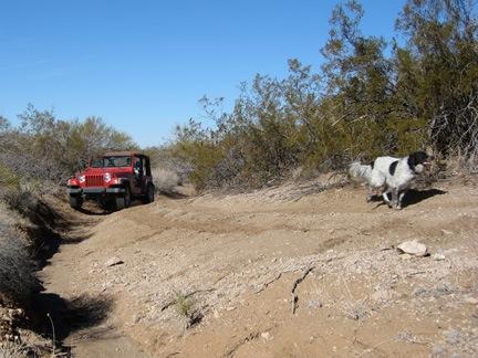 Jeep Roads