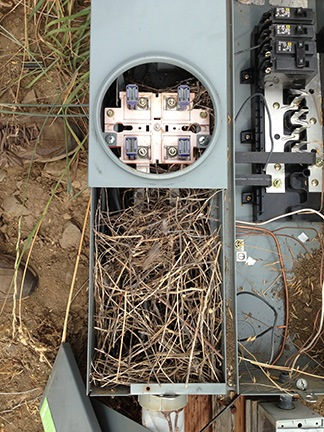 Electric Box Before