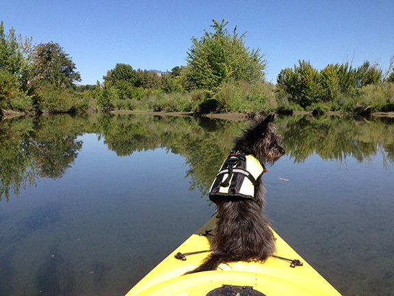 Penny on the Kayak