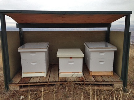 Bees Winterizing My Hives An Eclectic Mind