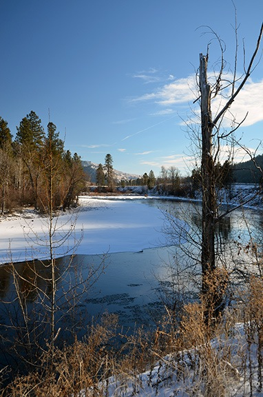 Along the Methow River