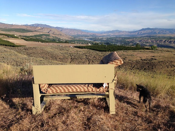 Lookout Point Bench