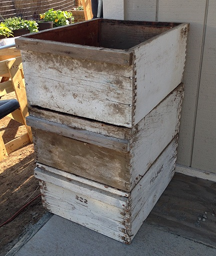 Beat Up Hive Boxes