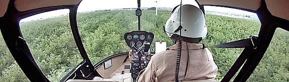 Cherry Drying Cockpit