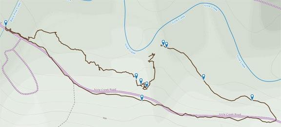 Camp Trail