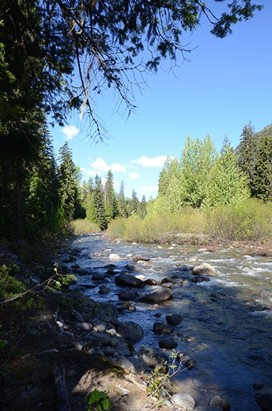 Up Icicle Creek