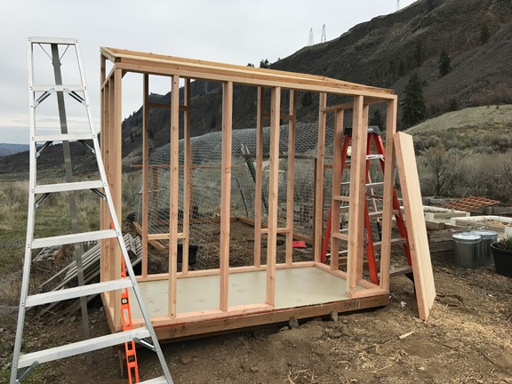 Framed Chicken Coop